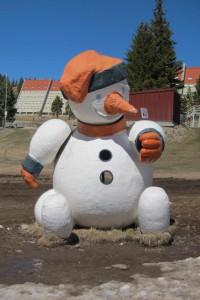 "Muñeco de ""Nieve"""