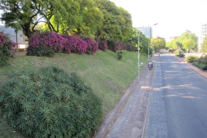 Boulevard Artigas Vista Izquierda