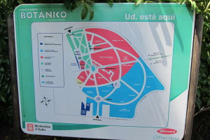 Plano del botanico