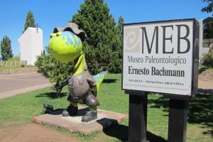 Museo Enrique Bachmann
