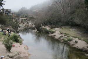 Rio Del Medio