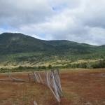 Cruce Columbia - Pampa Trompul