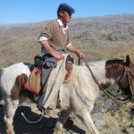 El guia de las mulas