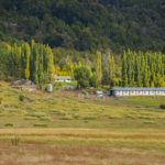 Patagonia Run 70K - PAS Quilanlahue